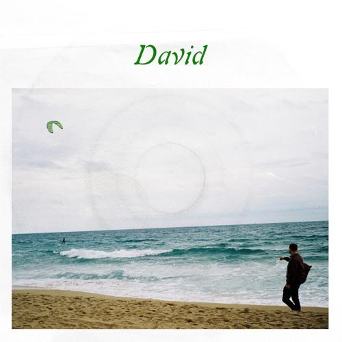 Frøkedal - David