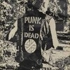 Reduzida a.k.a. Derletzteechtepunker - Doch, Punk ist jetzt tot