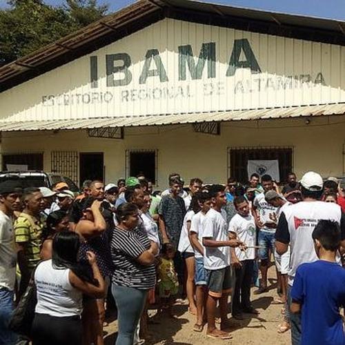 Atingidos por Belo Monte querem ser removidos de área alagada sem saneamento básico