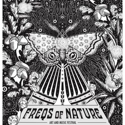 Hans Dunkelkammer - Freqs Of Nature 2018 Groove Floor Monday