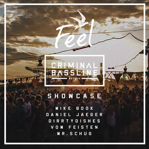 Mike Book @ Feel Festival 2018 | Tiefes Moor (Criminal Bassline Showcase)