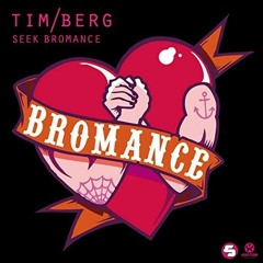 STURE Remake | Tim Berg - Seek Bromance (Free Download)