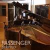 Passenger [stripped] - Ava James