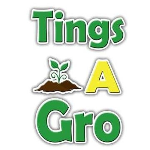 TINGS A GRO - Jamaican Farm Radio Programs sponsored by PROPEL