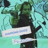 DIAMOND DOG$ FT RIGS