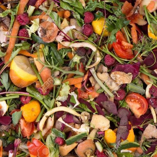 Edible Emissions Episode 2 - Forgotten Food