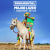 Rudimental & Major Lazer - Let Me Live (feat. Anne-Marie & Mr. Eazi)COVER