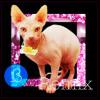 Tove Lo ft. Charli XCX, Icona Pop - Bitches Remix (ßänales VIP Remix)