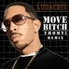 Ludacris - Move Bitch (Thømtï Remix)
