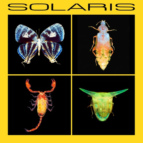 SOLARIS - by Daniel Kisters
