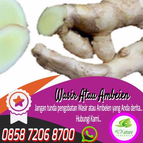 Harga Obat Wasir Herbal