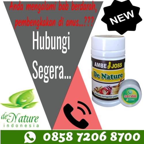 Obat Herbal Untuk Wasir Stadium 4