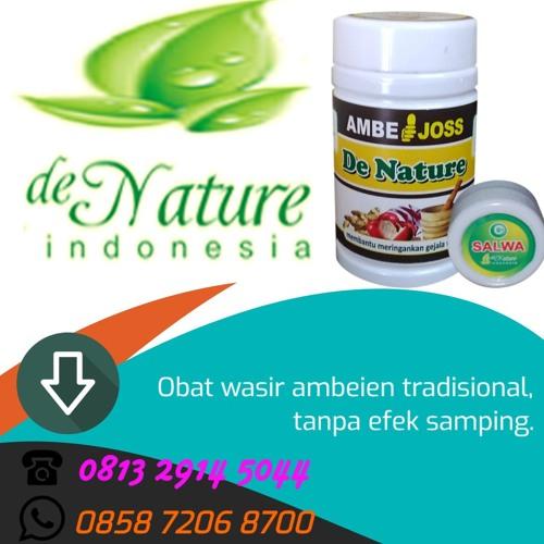 Obat Herbal Wasir Parah