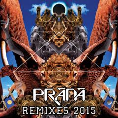 Prana - Alien Pets (Filteria Remix)