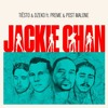 Tiësto & Dzeko Vs MasterOC - Jackie Chan Feat. Preme & Post Malone (MasterOC Flash VIP Remix)