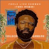 Childish Gambino - Feels Like Summer (TARI Remix)