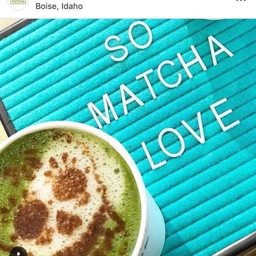 Idaho Ambassador Talks with Wanna Matcha Tea