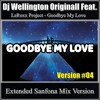 Dj Wellington Originall Feat. LaRoxx Project - Goodbye My Love (Extended Sanfona Mix Version #04)