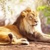 2740 Lion Roaring Ringtone Mp3