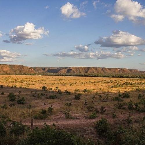 Estudante usa agroecologia para resgatar cultura de comunidades em Matopiba