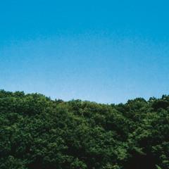 山(Yama)