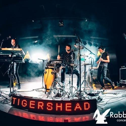 Tigershead Live @ Botsberg