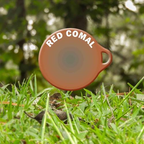 Red COMAL - Formacion De Capacidades Para La Reducción Del Riesgo A Desastres