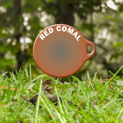 ASB - Campaña Inclusión Salvavidas - Fenopdih y Red COMAL