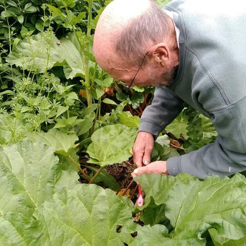 Organic Farm Stand's tribute to Bill Duesing