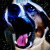 Download Doggu_Goto_space.mp3 Mp3
