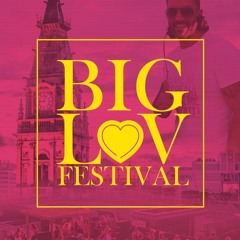 Rob Cain - The Big Luv Festival MEGAMIX