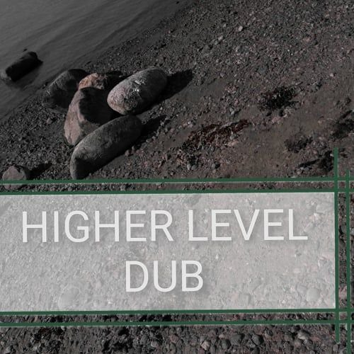 Higher Level Dub FIMR13