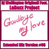 Dj Wellington Originall Feat. LaRoxx Project - Goodbye My Love (Extended Sanfona Mix Version #05)