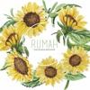 Bunga Matahari - Natania Karin (Ost. Rumah Dan Bunga Matahari) Vinyl Version