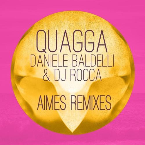 Daniele Baldelli & DJ Rocca - Quagga (Aimes' 'Day Into Night' Remix)