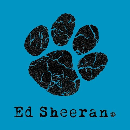 Hearts Don't Break Around Here- Ed Sheeran Cover