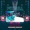 Mike Williams, R3HAB vs. Pitbull & Ne-Yo - Lullaby vs. Give Me Everything (WeDamnz Mashup)