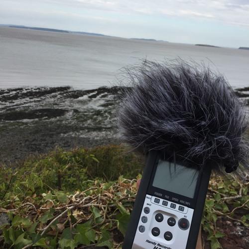 Sounding the Anthropocene - Penarth Beach, South Wales