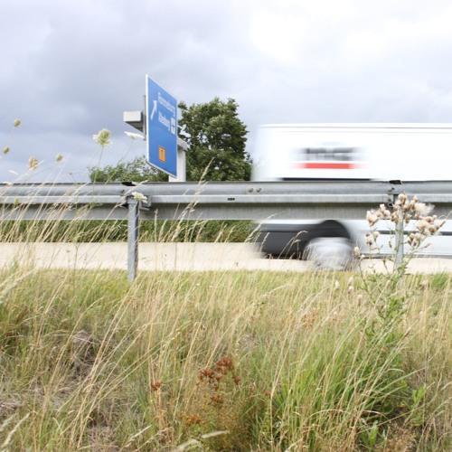 Autobahnsingen