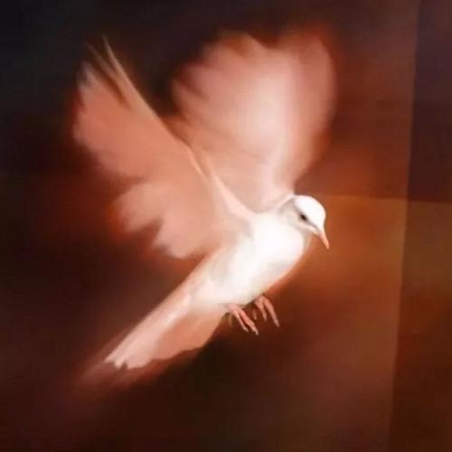 有圣灵做为印记和凭据(以弗所书 1章13~23节 ) 07/23/2018
