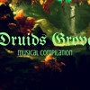 Druid's Grove - Life Answers - Musical Score - Richard Daskas