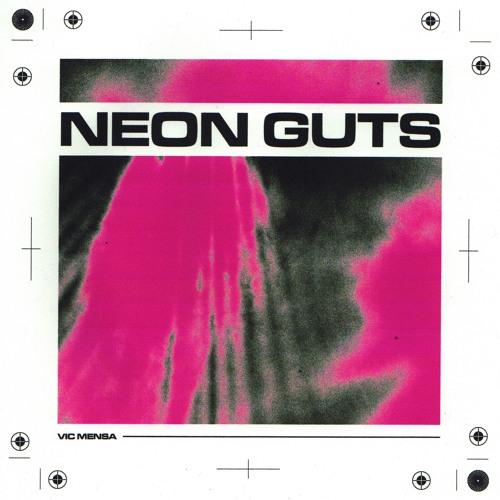 NEON GUTS (FREESTYLE) - VIC MENSA