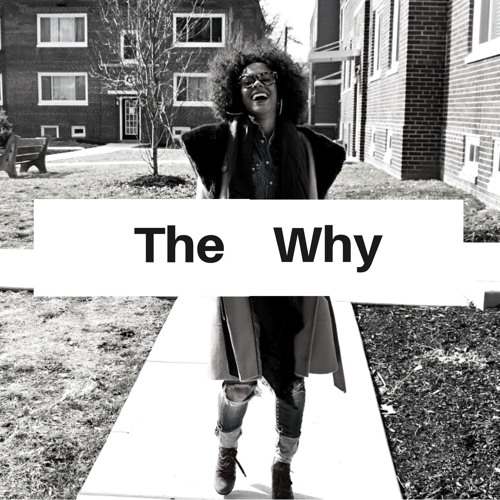 The Why 2