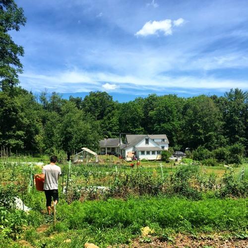 Episode One: Longhaul Farm
