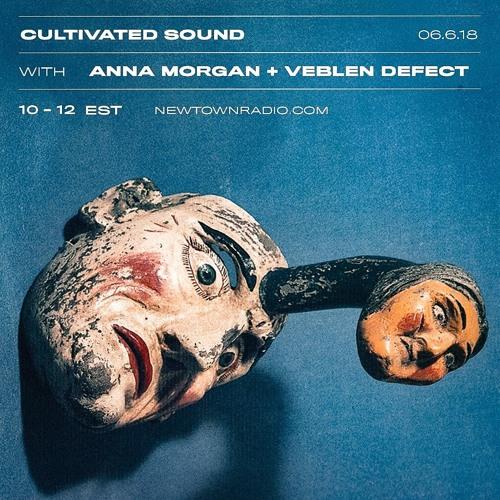 Cultivated Sound Newtown Radio 014: Anna Morgan+ Veblen Defect