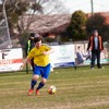 Blair Marshall profile + preview R17-R18 Williamstown & Epping