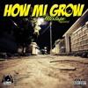 How Mi Grow / Dancehall Mixtape (Live Audio) - By Drop Bomb Entertainment (26/07/18)