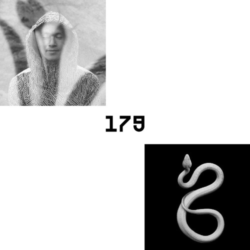 LAYER #179   GROUND