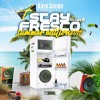 STAY FRESCO 6 - SUMMER 2018 - KAYA SOUND - DANCEHALL ED