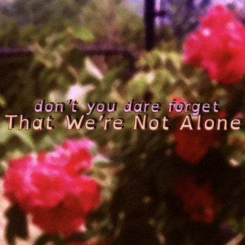 That We're Not Alone
